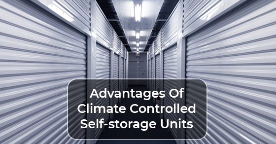 Advantages Of Climate Controlled Self-storage Units