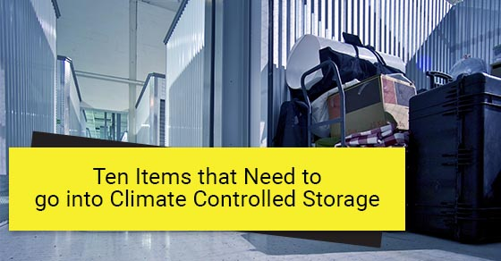 Things to store in climate controlled storage units